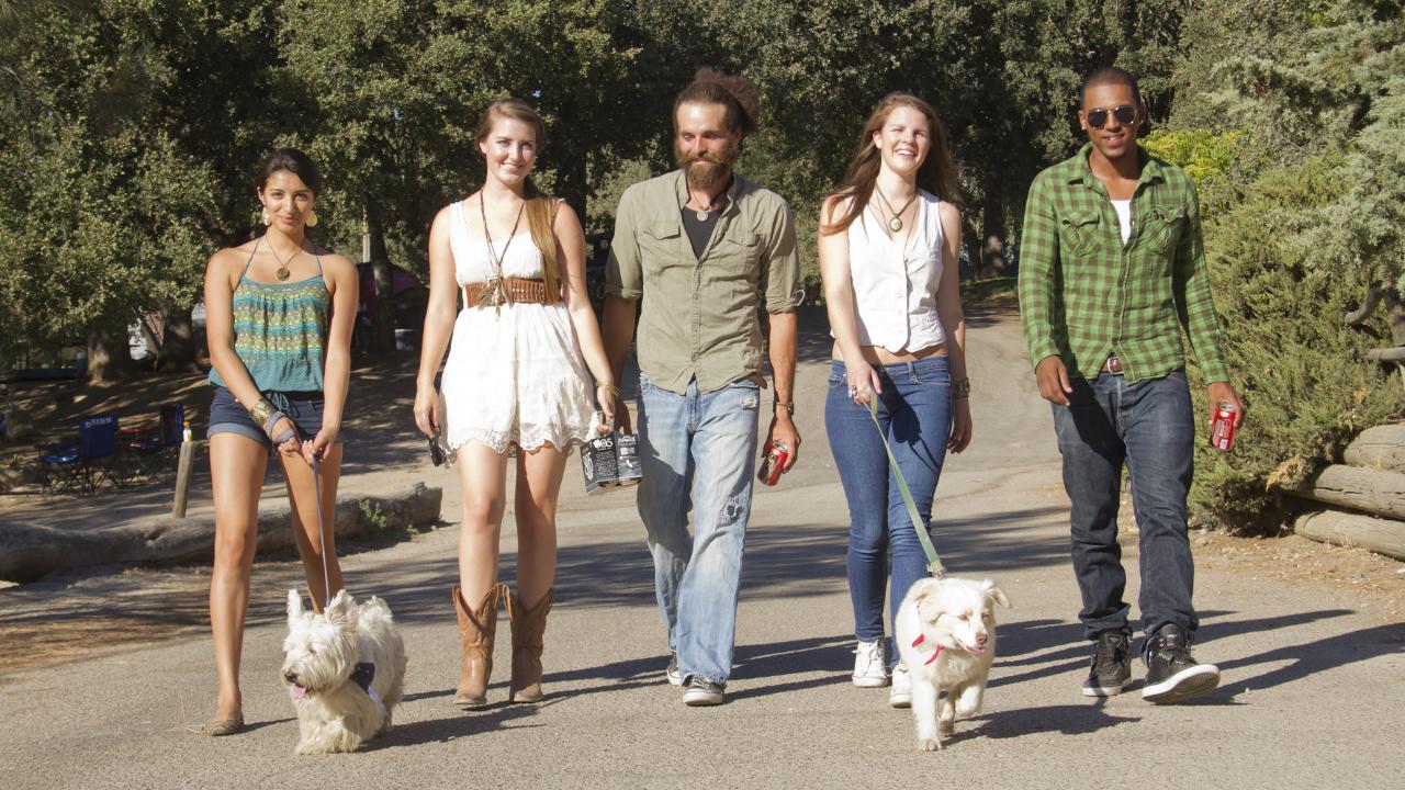 amigos sacando a pasear a sus perros