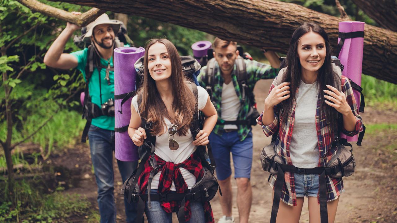 amigos de excursion en el bosque