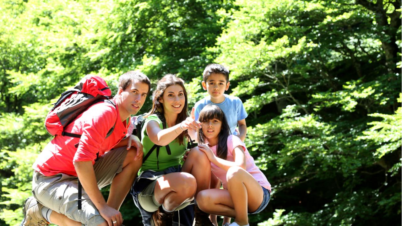 familia practicando senderismo en un bosque