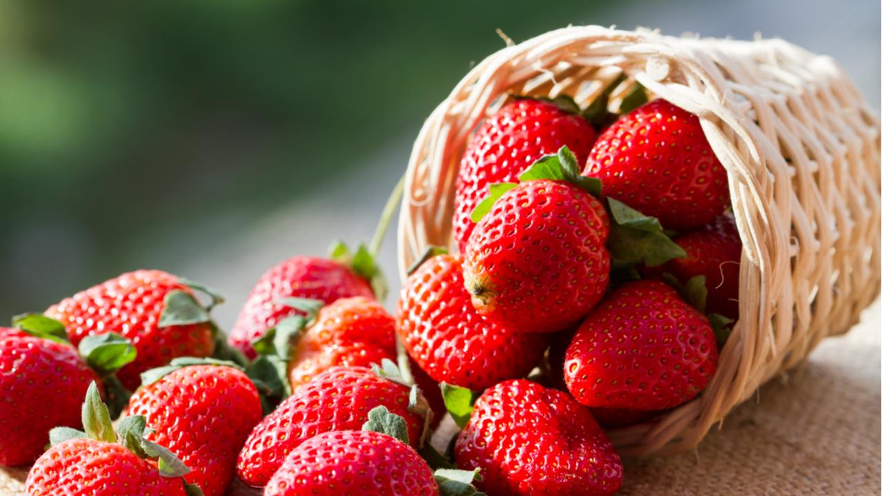 fresas de estación en una cesta