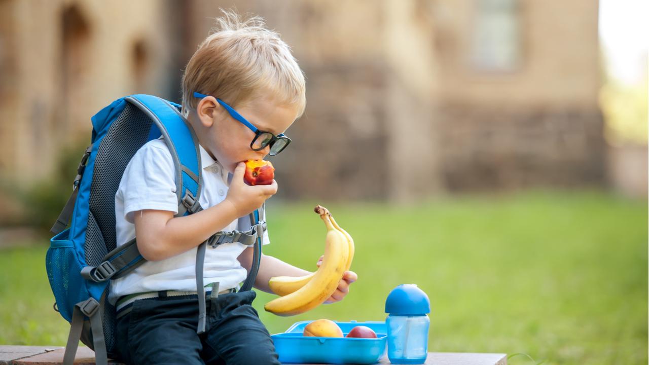 niño pequeño comiendo su lonchera