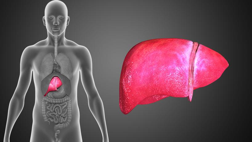 cancer de higado con hepatitis b