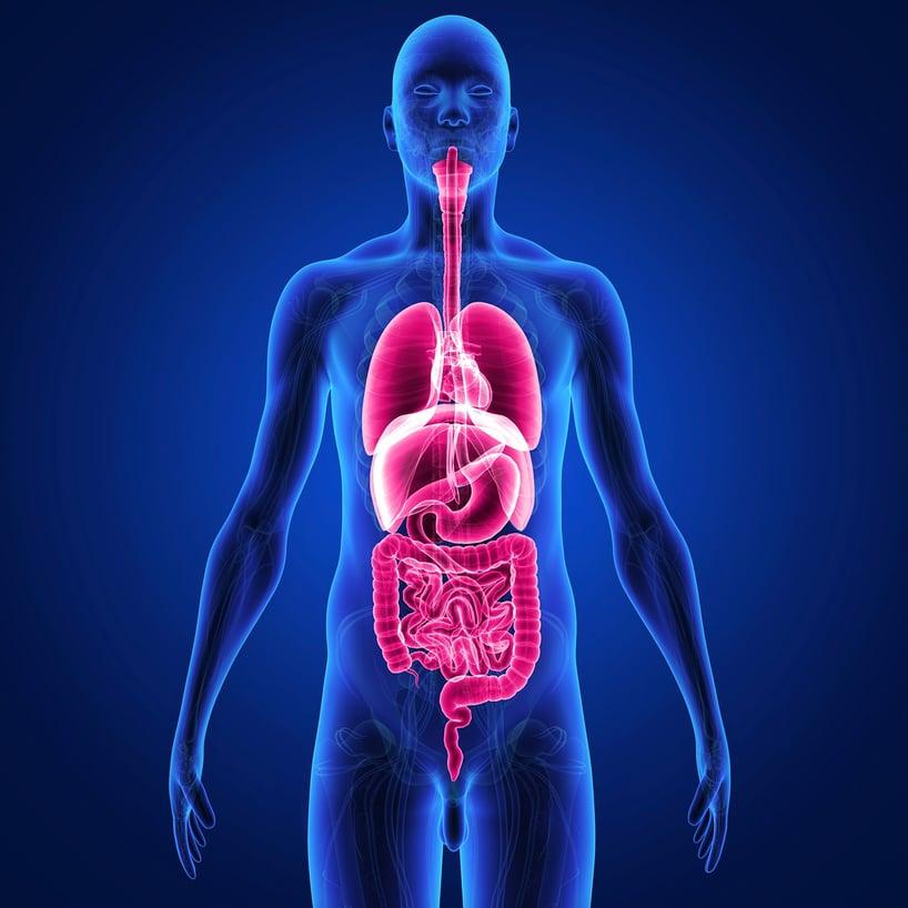 cancer al esofago interno