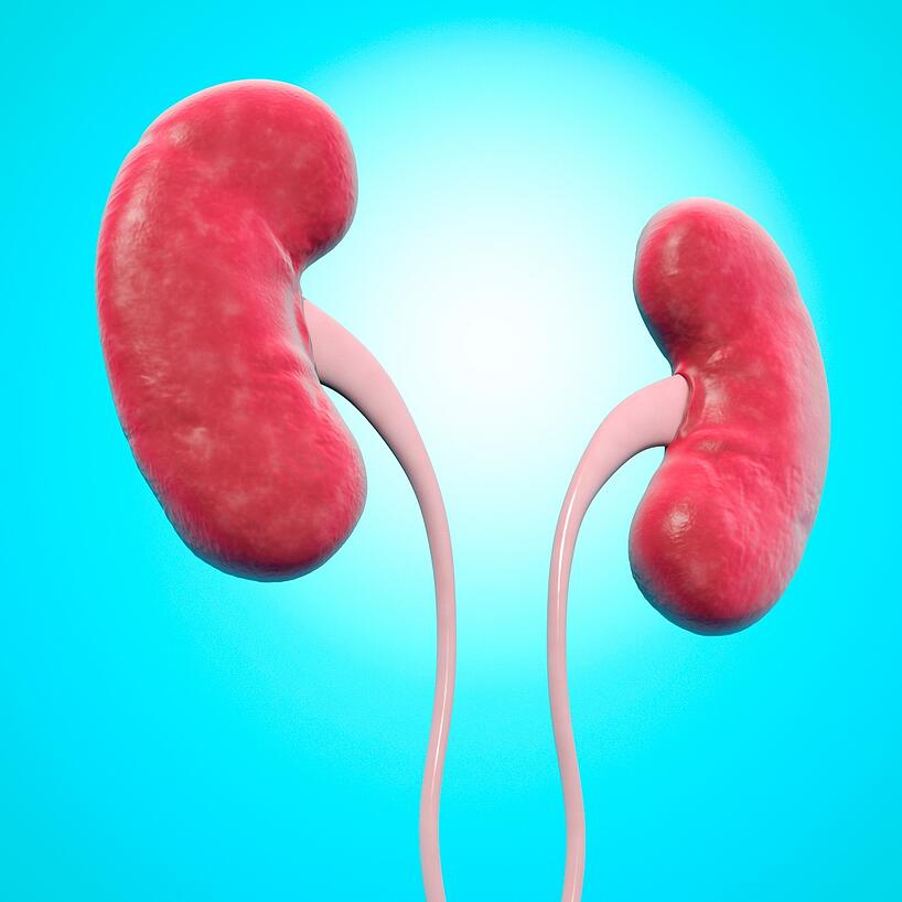dos riñones