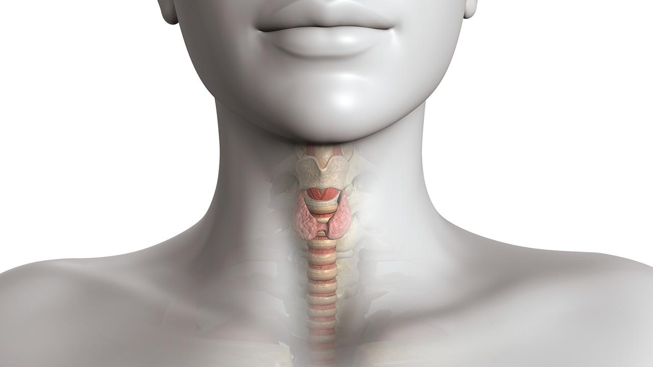 cancer-de-tiroides-sintomas.jpg