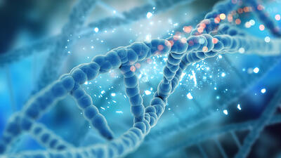 Las causas genéticas del Cáncer