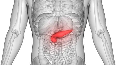Cáncer de páncreas, todo lo debes sobre esta enfermedad