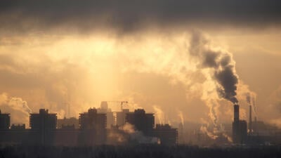 El cáncer por contaminación ambiental es una realidad