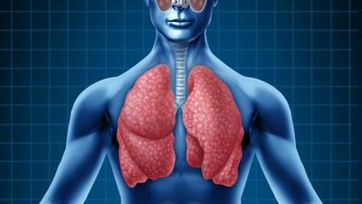 Sistema respiratorio: realiza estos ejercicios para fortalecer tus pulmones