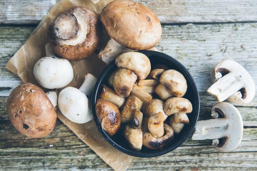 hongos y champignones