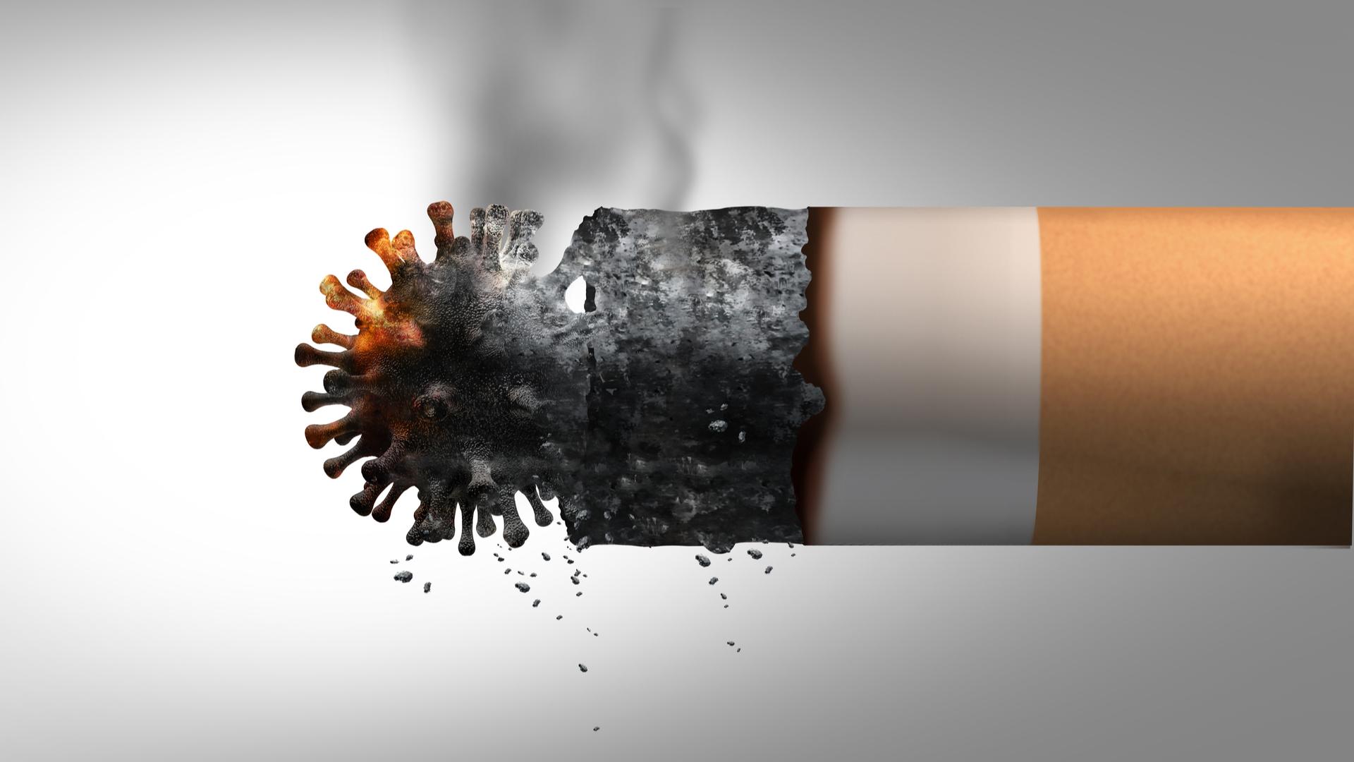 que dice la OMS sobre el tabaquismo